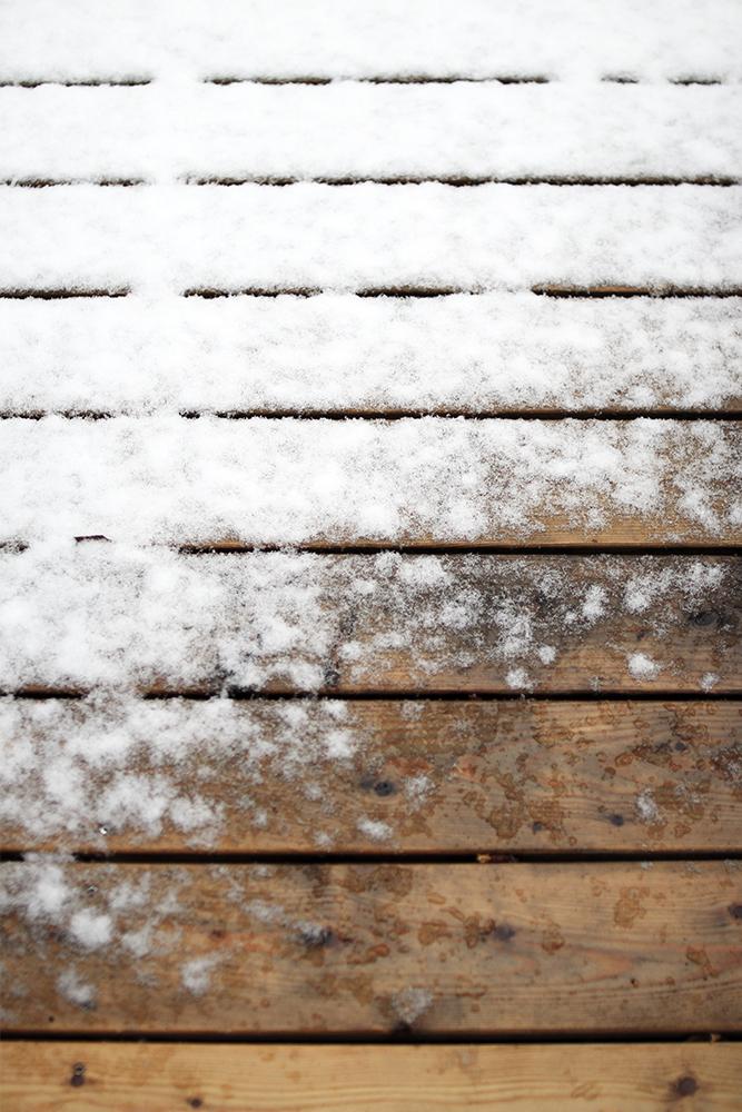 lumi_puussa