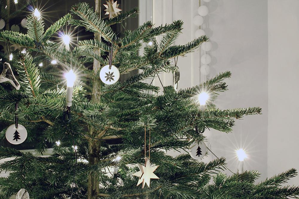 joulukuusi_lahikuva