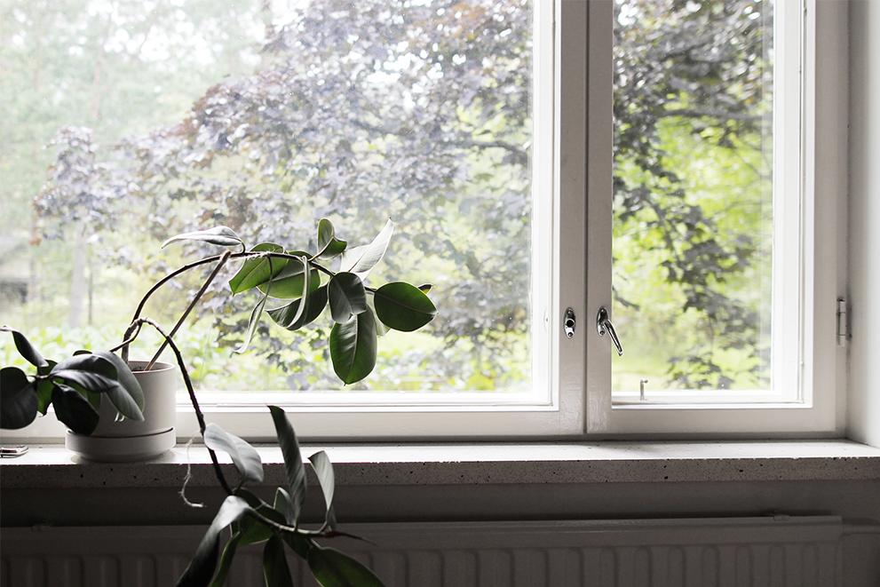 ikkunalaudalla copy