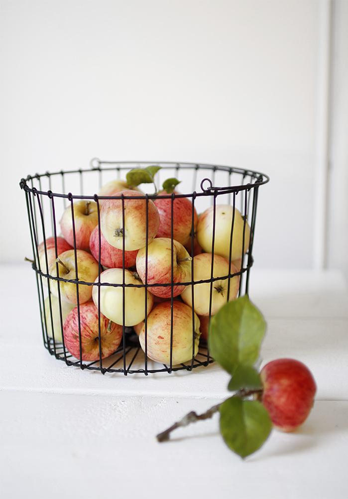 omenat_korissa