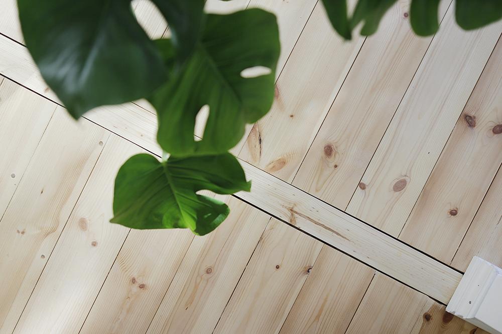 lattiapuu_lehti
